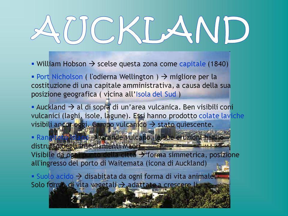 William Hobson scelse questa zona come capitale (1840) Port Nicholson ( l'odierna Wellington ) migliore per la costituzione di una capitale amministra