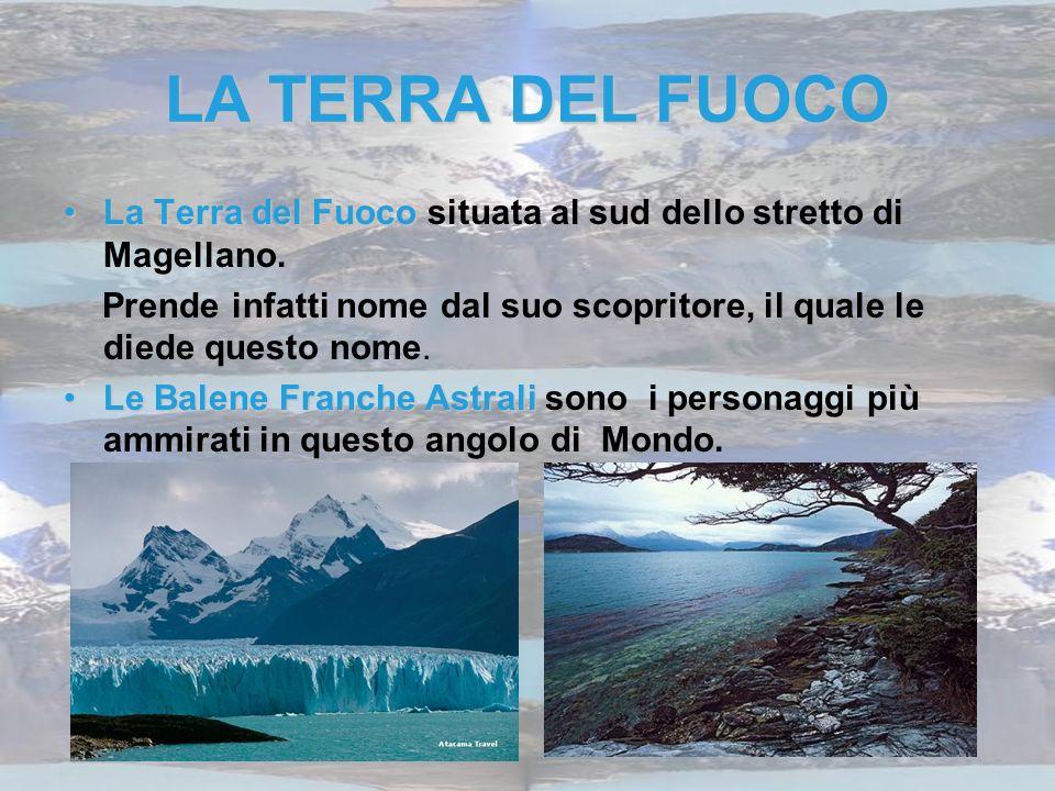 LA TERRA DEL FUOCO La Terra del FuocoLa Terra del Fuoco situata al sud dello stretto di Magellano. Prende infatti nome dal suo scopritore, il quale le