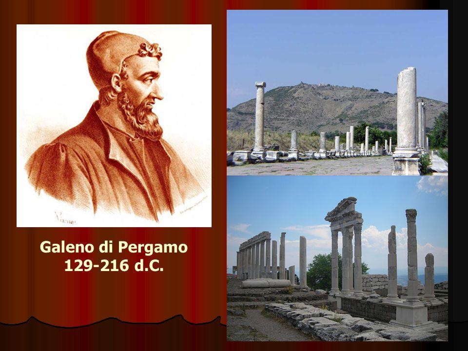 Dal 162 visse a Roma, dove scrisse e operò estesamente, dimostrando così pubblicamente la sua conoscenza dell anatomia.