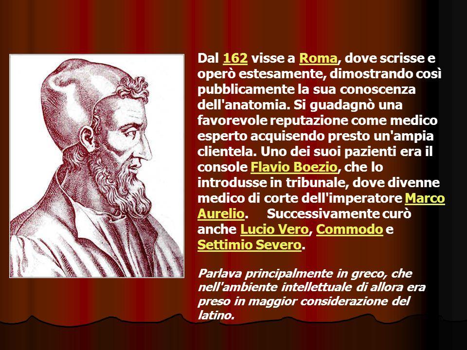Dal 162 visse a Roma, dove scrisse e operò estesamente, dimostrando così pubblicamente la sua conoscenza dell'anatomia. Si guadagnò una favorevole rep