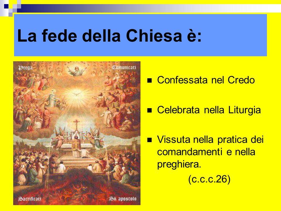 La fede della Chiesa è: Confessata nel Credo Celebrata nella Liturgia Vissuta nella pratica dei comandamenti e nella preghiera. (c.c.c.26) ritardo