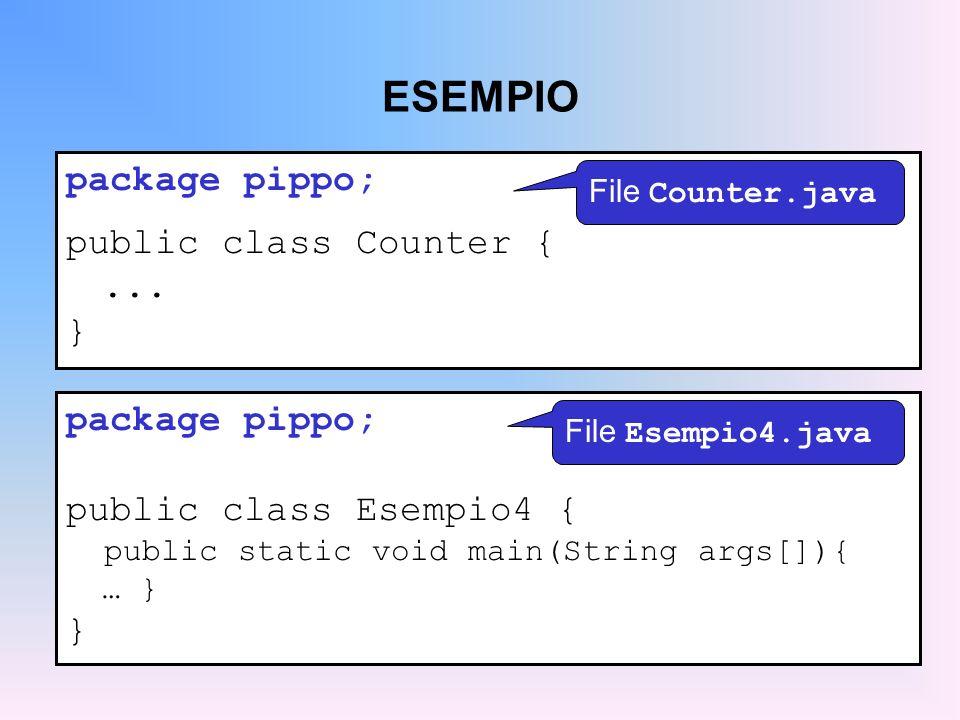 ESEMPIO package pippo; public class Counter {...
