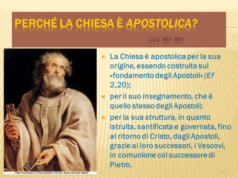 La Chiesa è apostolica per la sua origine, essendo costruita sul «fondamento degli Apostoli» (Ef 2,20); per il suo insegnamento, che è quello stesso d