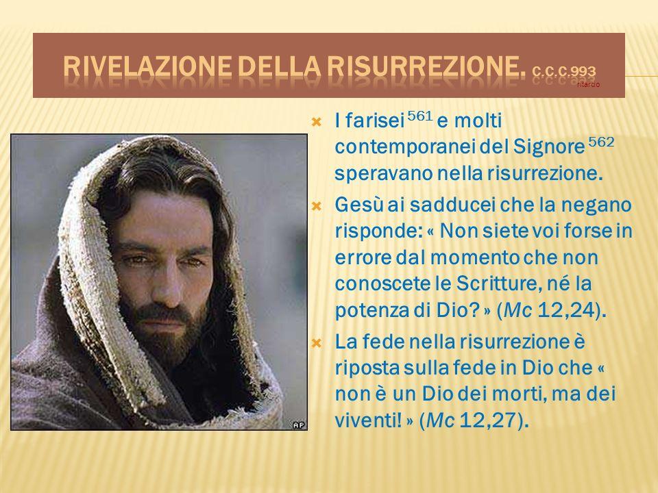 I farisei 561 e molti contemporanei del Signore 562 speravano nella risurrezione. Gesù ai sadducei che la negano risponde: « Non siete voi forse in er