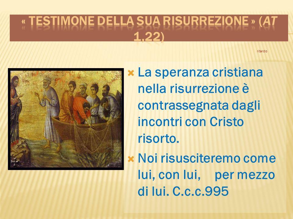 La speranza cristiana nella risurrezione è contrassegnata dagli incontri con Cristo risorto.