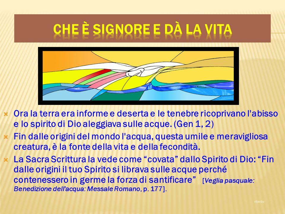 Ora la terra era informe e deserta e le tenebre ricoprivano l'abisso e lo spirito di Dio aleggiava sulle acque. (Gen 1, 2) Fin dalle origini del mondo