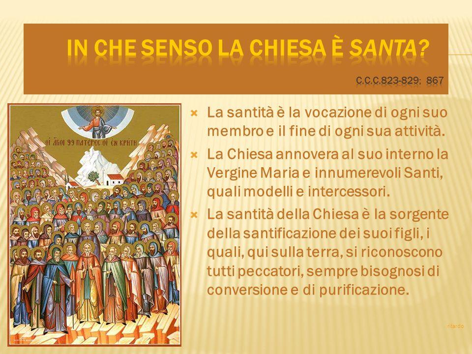 La santità è la vocazione di ogni suo membro e il fine di ogni sua attività. La Chiesa annovera al suo interno la Vergine Maria e innumerevoli Santi,