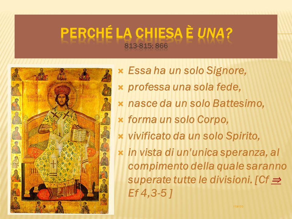 Essa ha un solo Signore, professa una sola fede, nasce da un solo Battesimo, forma un solo Corpo, vivificato da un solo Spirito, in vista di un'unica