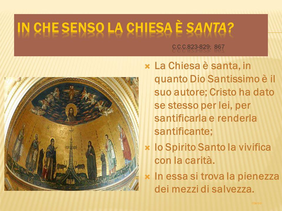 La Chiesa è santa, in quanto Dio Santissimo è il suo autore; Cristo ha dato se stesso per lei, per santificarla e renderla santificante; lo Spirito Santo la vivifica con la carità.
