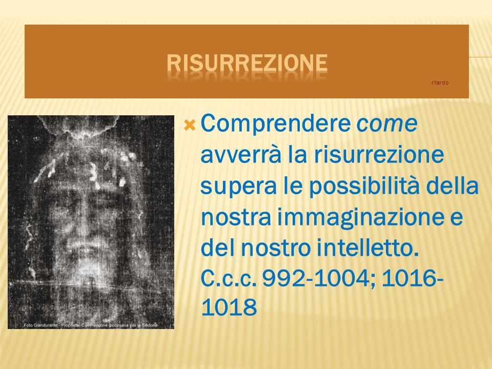 Comprendere come avverrà la risurrezione supera le possibilità della nostra immaginazione e del nostro intelletto.