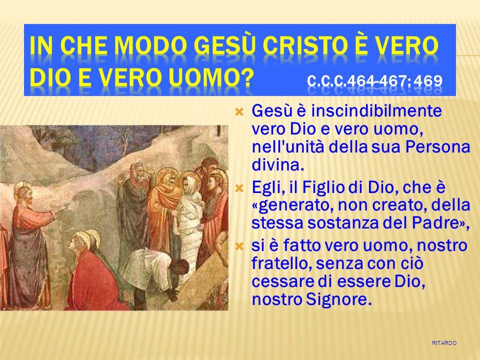 Gesù è inscindibilmente vero Dio e vero uomo, nell'unità della sua Persona divina. Egli, il Figlio di Dio, che è «generato, non creato, della stessa s