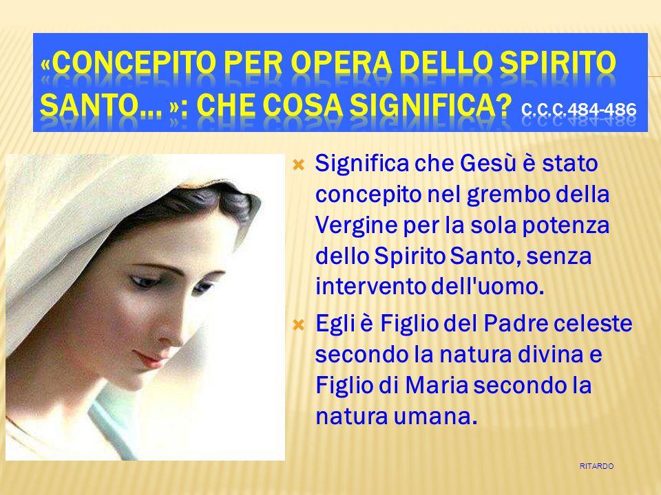 Significa che Gesù è stato concepito nel grembo della Vergine per la sola potenza dello Spirito Santo, senza intervento dell uomo.