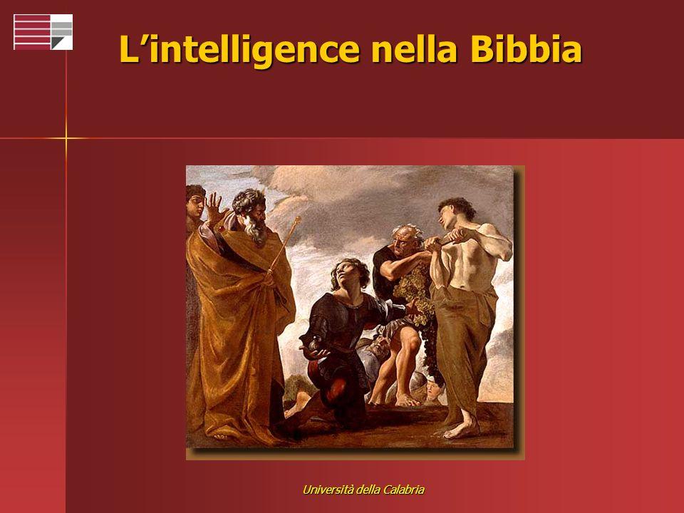 Università della Calabria Lintelligence nella Bibbia