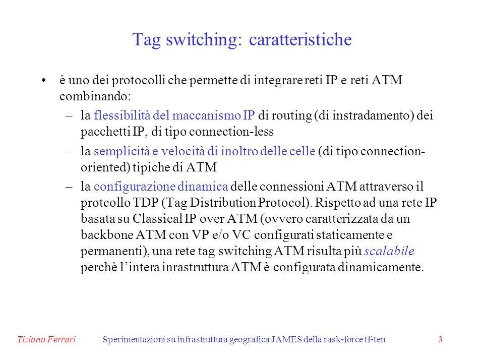 Tiziana FerrariSperimentazioni su infrastruttura geografica JAMES della rask-force tf-ten3 è uno dei protocolli che permette di integrare reti IP e reti ATM combinando: –la flessibilità del maccanismo IP di routing (di instradamento) dei pacchetti IP, di tipo connection-less –la semplicità e velocità di inoltro delle celle (di tipo connection- oriented) tipiche di ATM –la configurazione dinamica delle connessioni ATM attraverso il protcollo TDP (Tag Distribution Protocol).