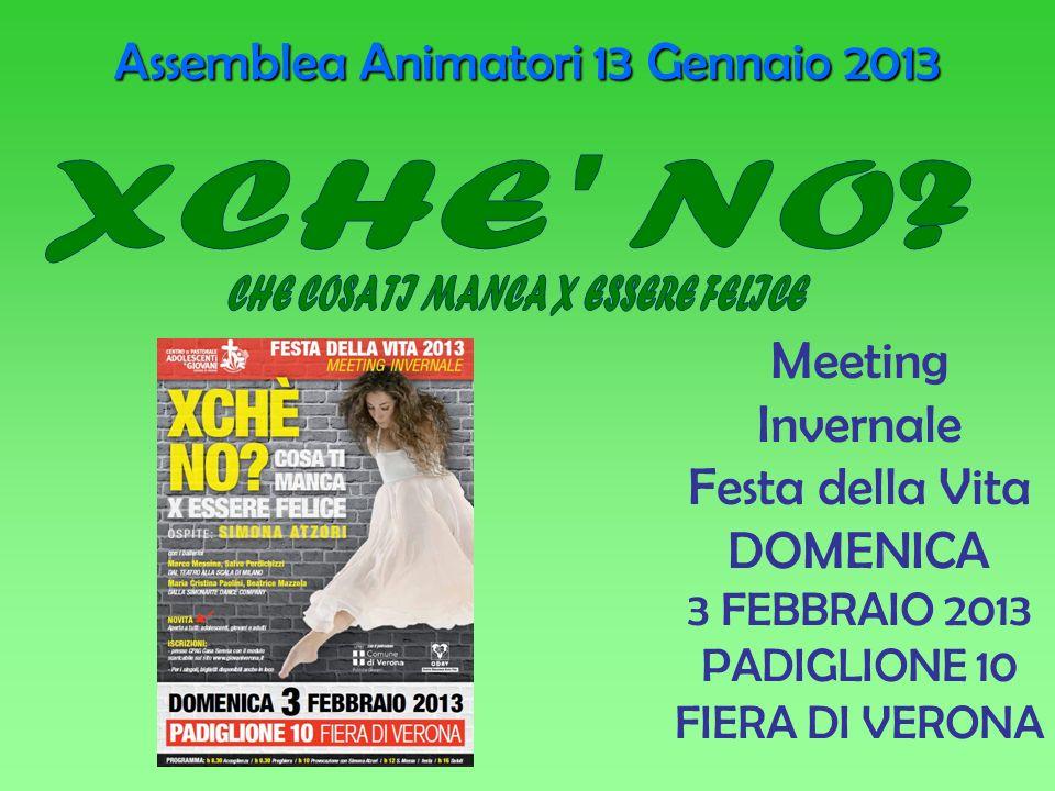 Meeting Invernale Festa della Vita DOMENICA 3 FEBBRAIO 2013 PADIGLIONE 10 FIERA DI VERONA Assemblea Animatori 13 Gennaio 2013