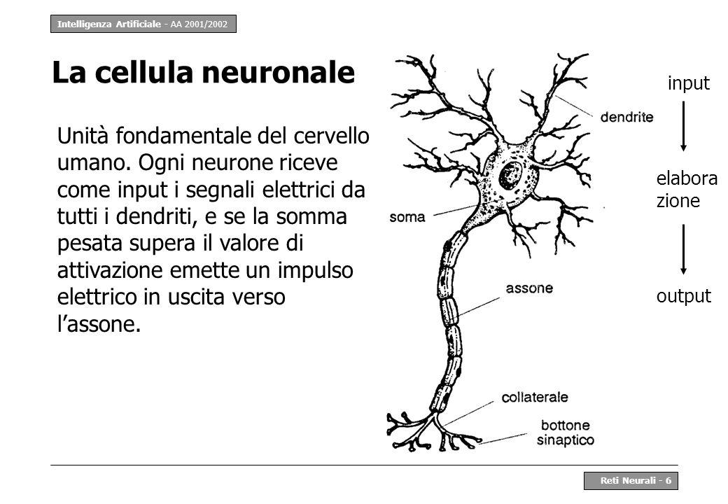 Intelligenza Artificiale - AA 2001/2002 Reti Neurali - 27 Struttura di Mlp il livello di input non contiene neuroni, per cui i livelli si contano dal successivo e nel precedente caso sono 2 ogni neurone è collegato con tutti i neuroni dello strato precedente e successivo, i neuroni sullo stesso strato non sono collegati; tutti i neuroni hanno la stessa funzione di attivazione la conoscenza viene elaborata dal livello input verso il livello output e non ci sono cicli la funzione di attivazione softmax crea ogni output in [0,1] e somma di output pari a 1, in modo da interpretare la risposta della rete come stime di probabilità