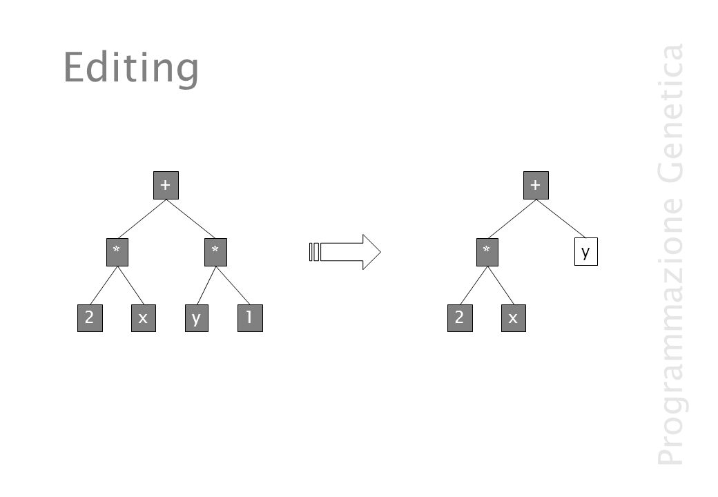 Programmazione Genetica Editing 2x * y1 + * 2x y + *