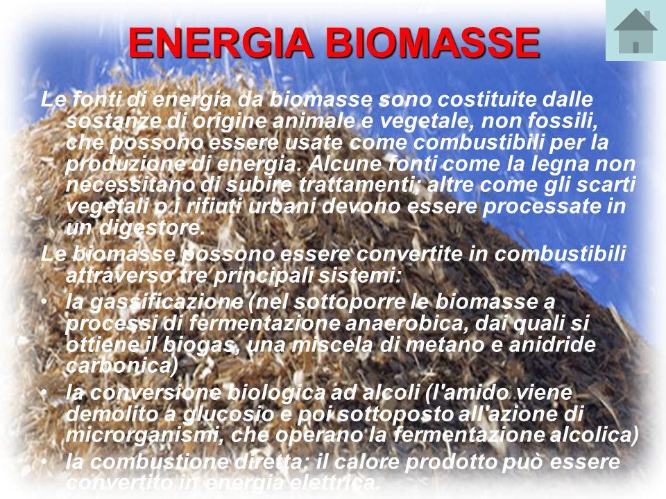 ENERGIA BIOMASSE Le fonti di energia da biomasse sono costituite dalle sostanze di origine animale e vegetale, non fossili, che possono essere usate c