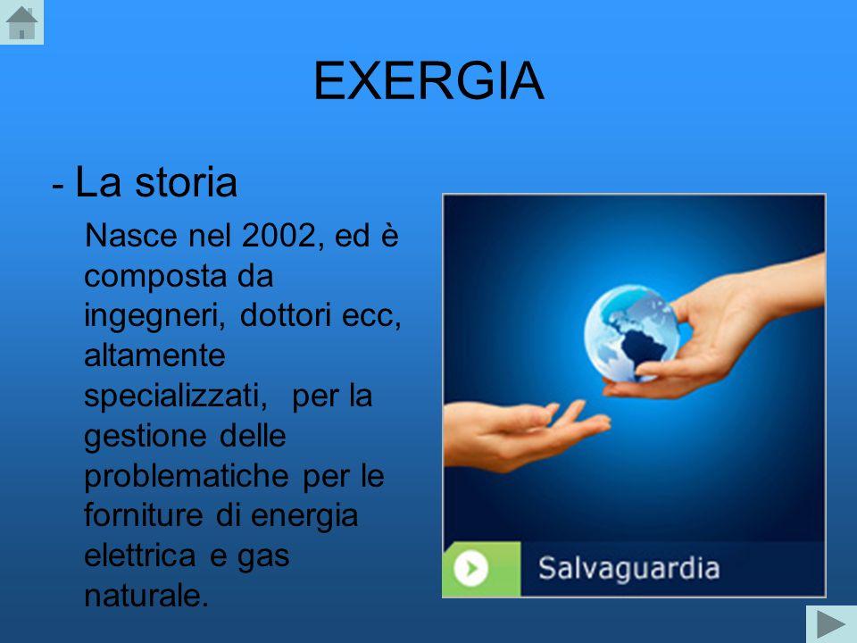 EXERGIA - La storia Nasce nel 2002, ed è composta da ingegneri, dottori ecc, altamente specializzati, per la gestione delle problematiche per le forni