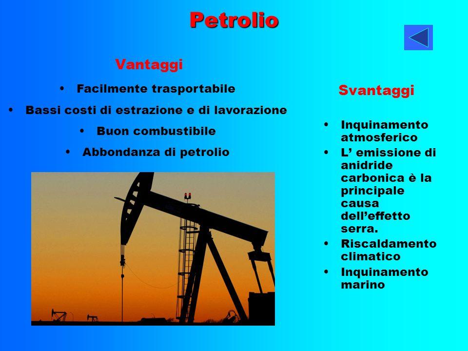 Petrolio Inquinamento atmosferico L emissione di anidride carbonica è la principale causa delleffetto serra. Riscaldamento climatico Inquinamento mari