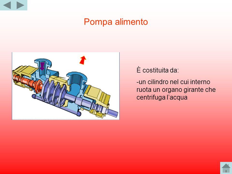 Pompa alimento È costituita da: -un cilindro nel cui interno ruota un organo girante che centrifuga lacqua