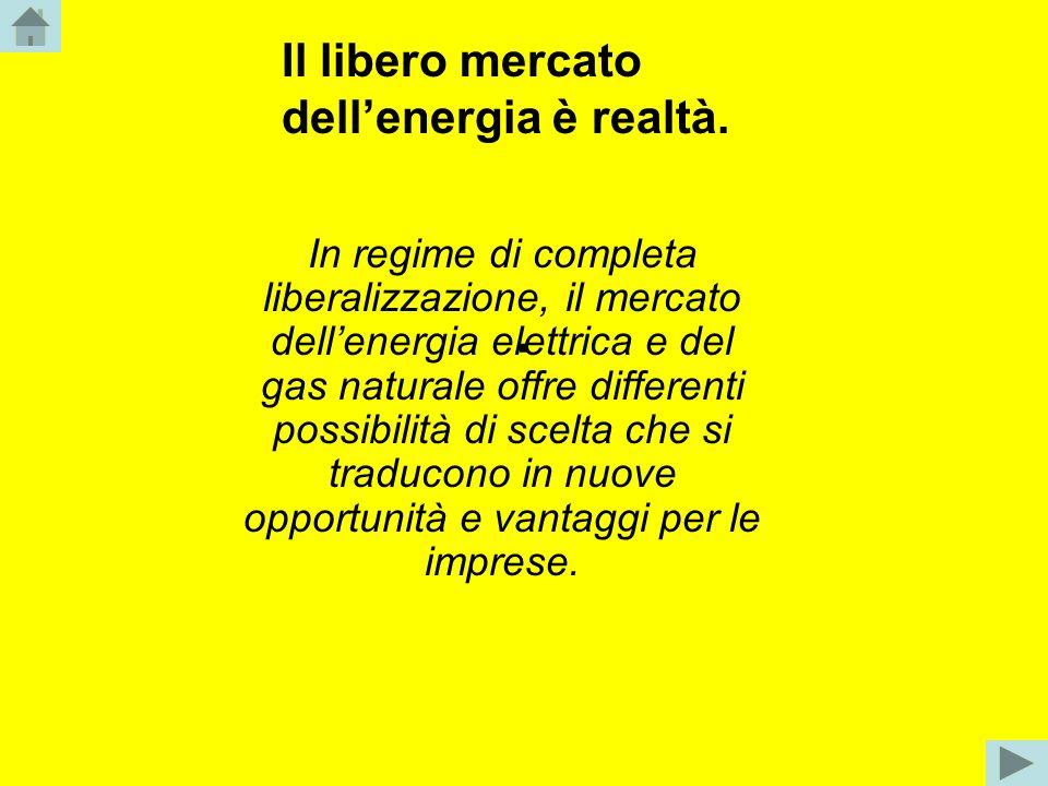 . In regime di completa liberalizzazione, il mercato dellenergia elettrica e del gas naturale offre differenti possibilità di scelta che si traducono