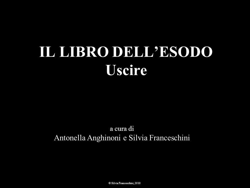 IL LIBRO DELLESODO Uscire a cura di Antonella Anghinoni e Silvia Franceschini © Silvia Franceschini, 2010