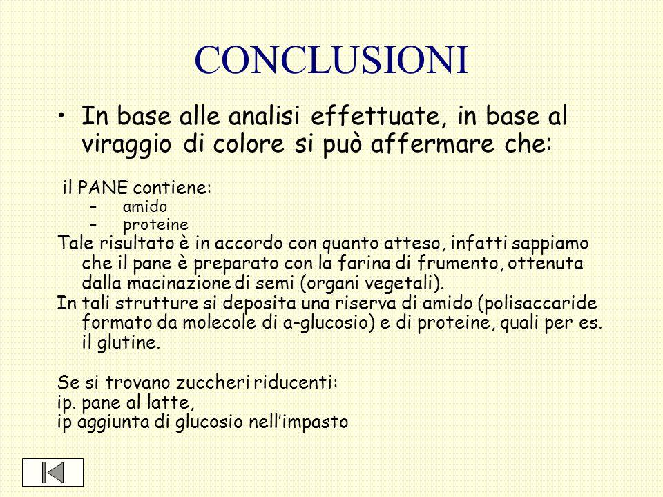 CONCLUSIONI In base alle analisi effettuate, in base al viraggio di colore si può affermare che: il PANE contiene: –amido –proteine Tale risultato è i