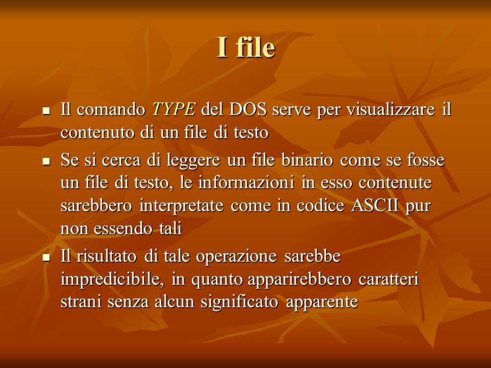 I file Il comando TYPE del DOS serve per visualizzare il contenuto di un file di testo Il comando TYPE del DOS serve per visualizzare il contenuto di