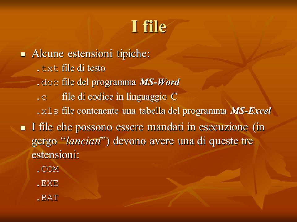I file Alcune estensioni tipiche: Alcune estensioni tipiche:.txt file di testo.doc file del programma MS-Word.c file di codice in linguaggio C.xls fil
