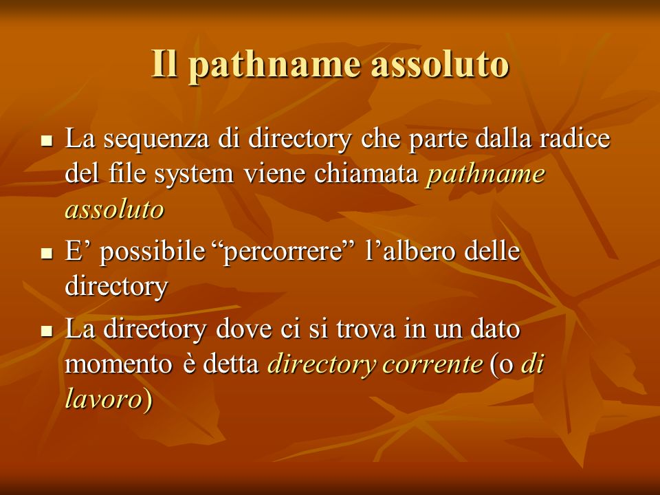 Il pathname assoluto La sequenza di directory che parte dalla radice del file system viene chiamata pathname assoluto La sequenza di directory che par