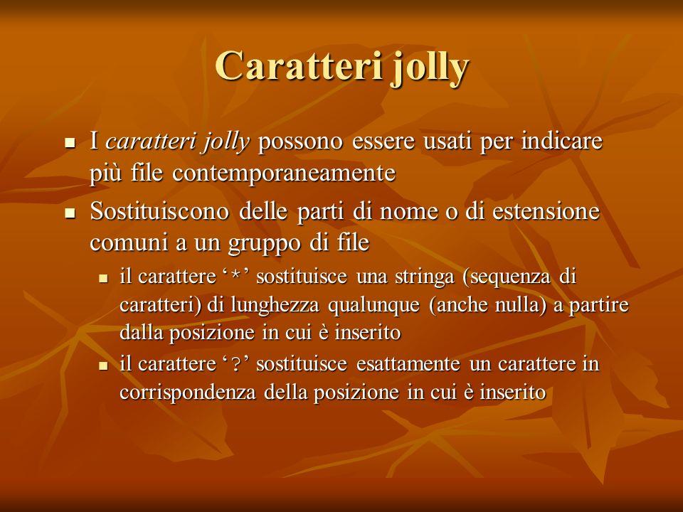 Caratteri jolly I caratteri jolly possono essere usati per indicare più file contemporaneamente I caratteri jolly possono essere usati per indicare pi