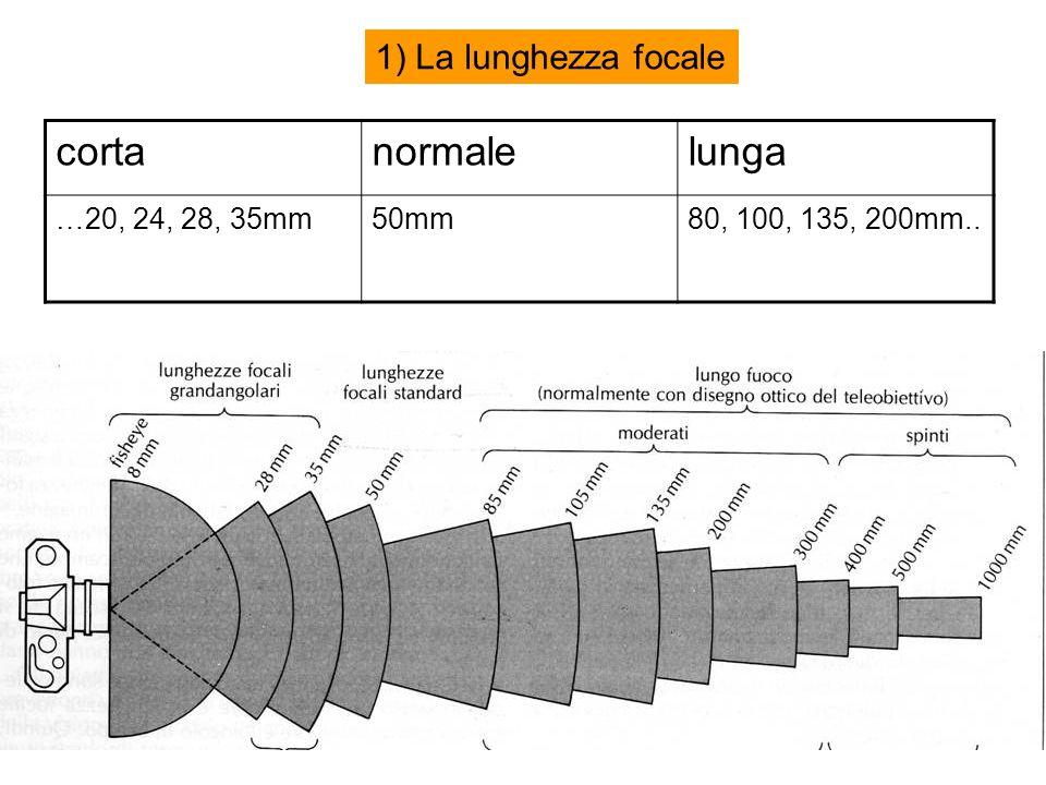 1) La lunghezza focale cortanormalelunga …20, 24, 28, 35mm50mm80, 100, 135, 200mm..