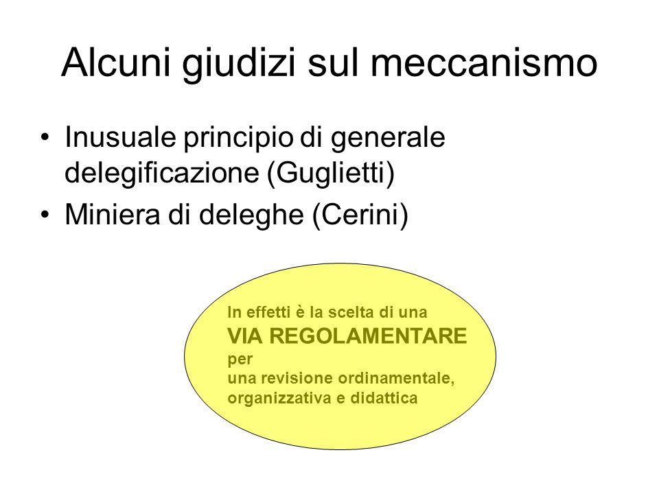 Alcuni giudizi sul meccanismo Inusuale principio di generale delegificazione (Guglietti) Miniera di deleghe (Cerini) In effetti è la scelta di una VIA