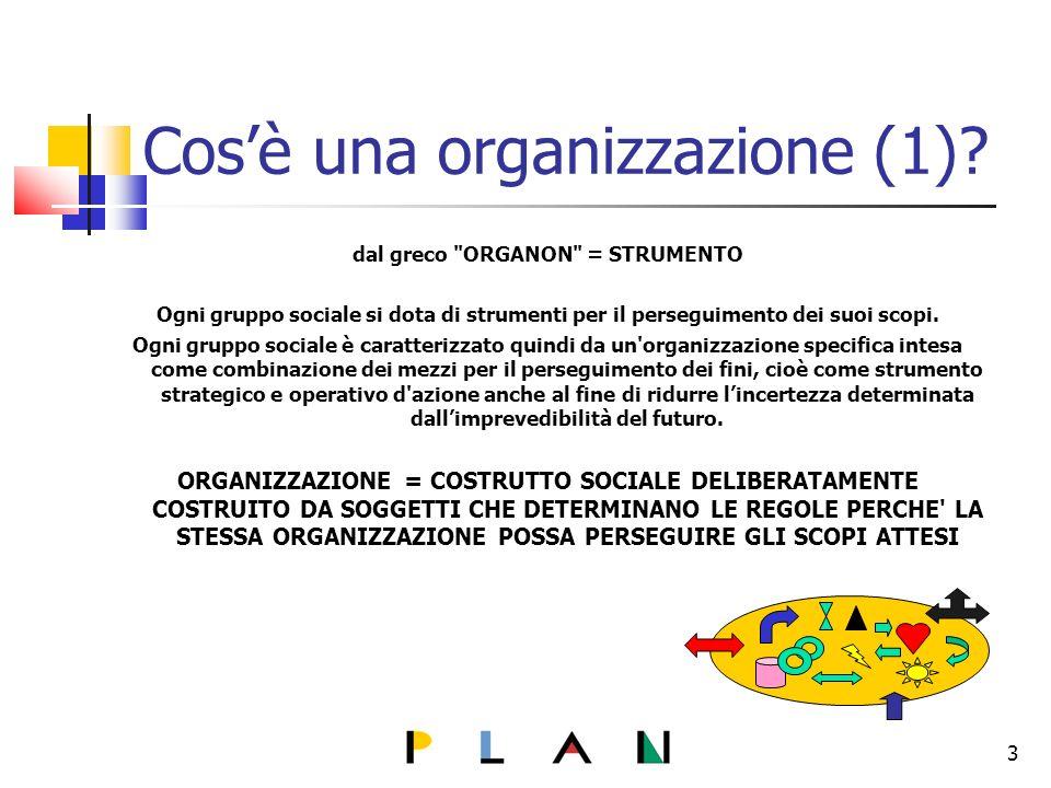 Cosè una organizzazione (1).