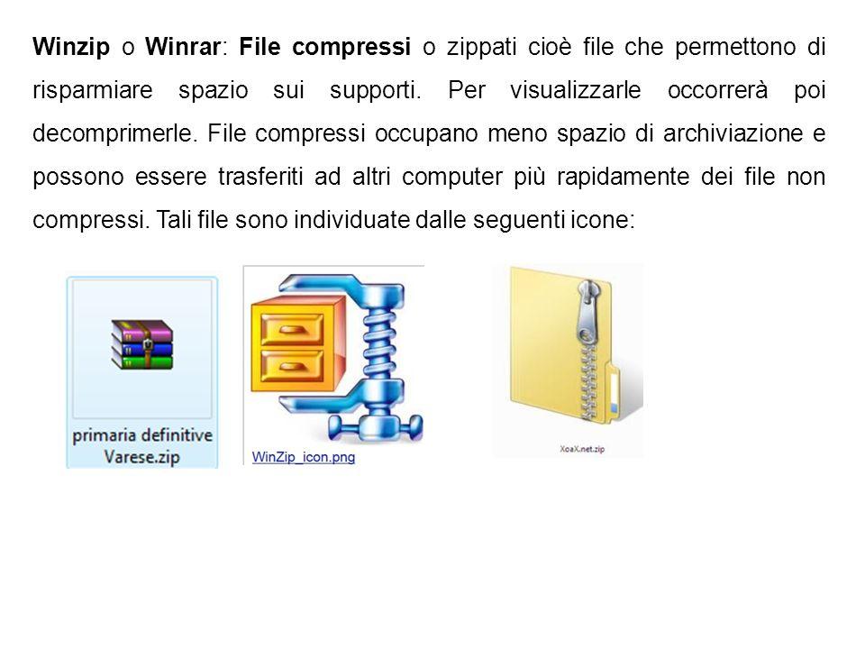 Winzip o Winrar: File compressi o zippati cioè file che permettono di risparmiare spazio sui supporti. Per visualizzarle occorrerà poi decomprimerle.