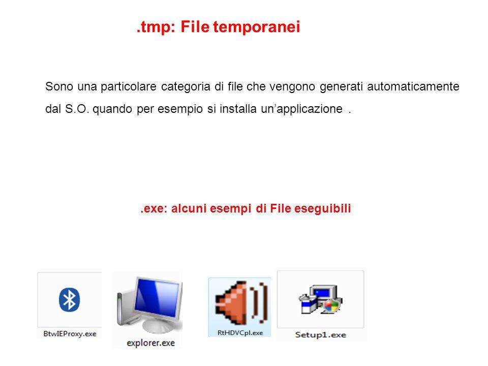 .tmp: File temporanei Sono una particolare categoria di file che vengono generati automaticamente dal S.O. quando per esempio si installa unapplicazio