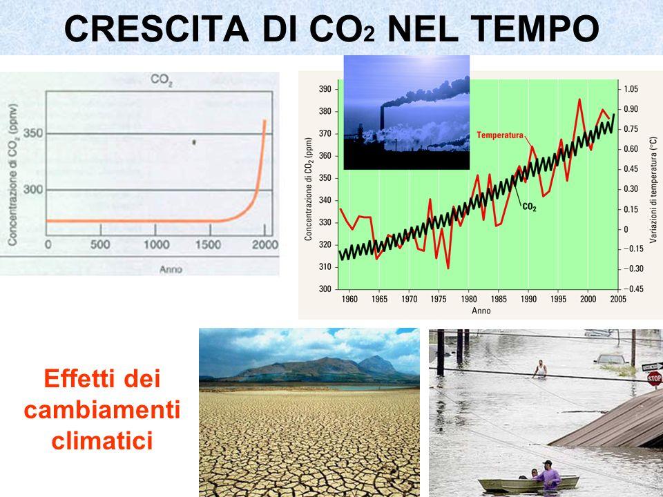 CRESCITA DI CO 2 NEL TEMPO Effetti dei cambiamenti climatici