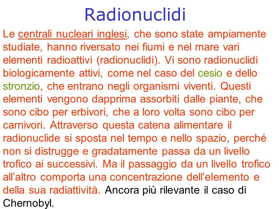 Radionuclidi Le centrali nucleari inglesi, che sono state ampiamente studiate, hanno riversato nei fiumi e nel mare vari elementi radioattivi (radionuclidi).