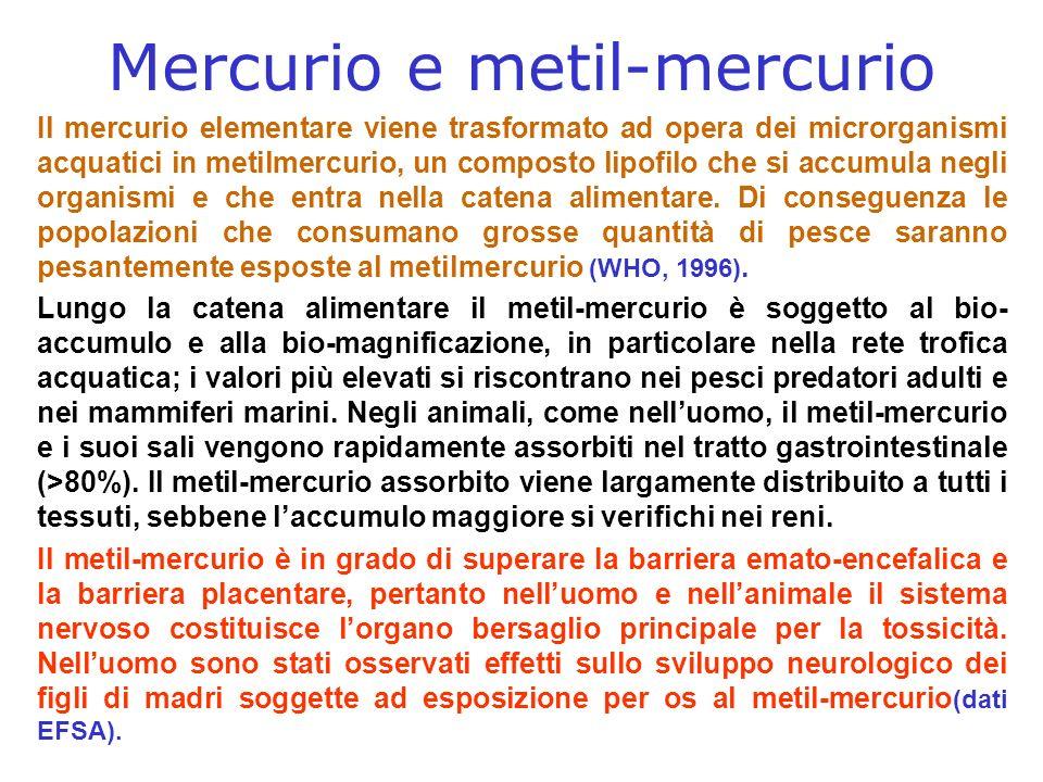 Mercurio e metil-mercurio Il mercurio elementare viene trasformato ad opera dei microrganismi acquatici in metilmercurio, un composto lipofilo che si accumula negli organismi e che entra nella catena alimentare.