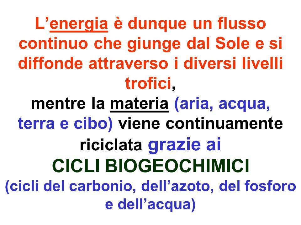 Malattia Le malattie derivano in gran parte dallalterato equilibrio tra organismo ed ambiente (e dai conseguenti flussi alterati).