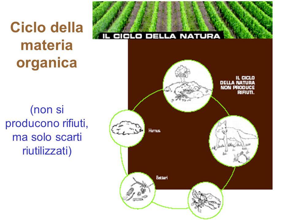 POP (Persistent Organic Pollutants) Molte sostanze tossiche sono persistenti, poiché resistono alla degradazione e possono percorrere anche lunghe distanze dai loro punti di emissione: la loro origine è nelle aree molto industrializzate e coltivate intensivamente.