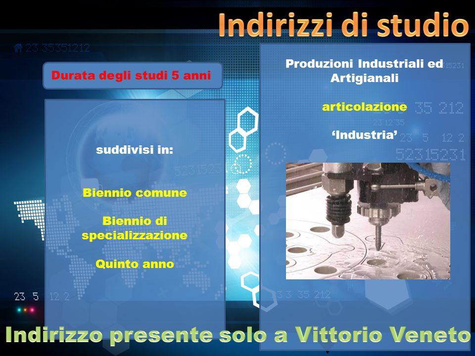Produzioni Industriali ed Artigianali articolazione Industria suddivisi in: Biennio comune Biennio di specializzazione Quinto anno