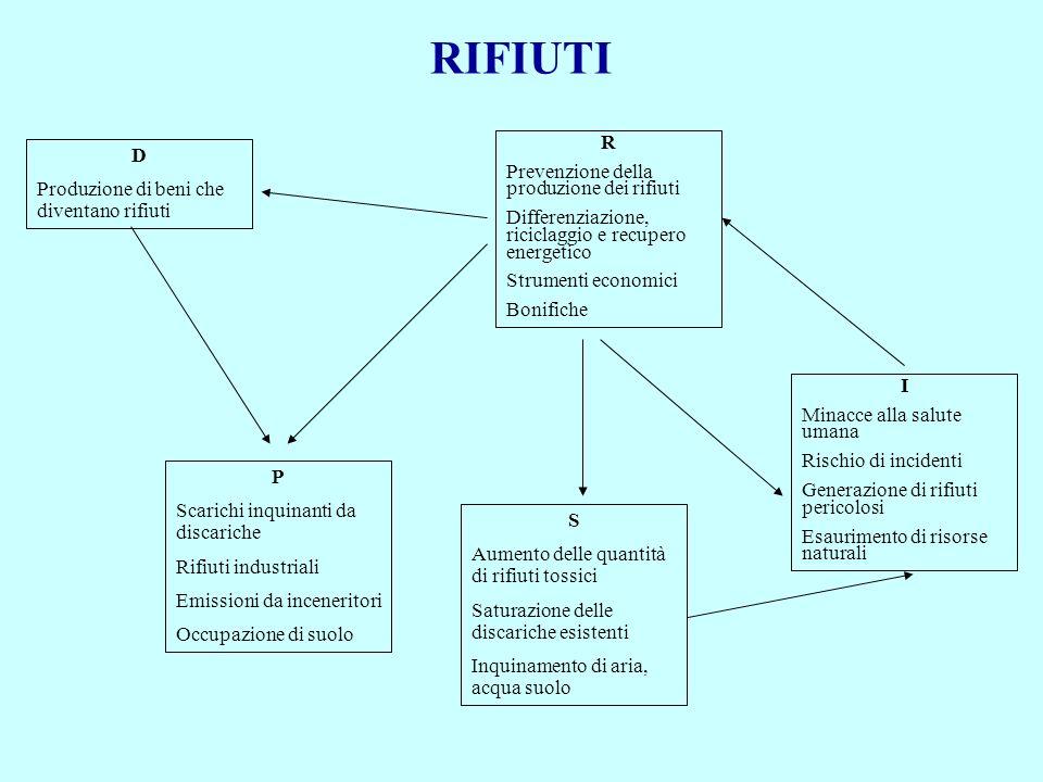 RIFIUTI D Produzione di beni che diventano rifiuti P Scarichi inquinanti da discariche Rifiuti industriali Emissioni da inceneritori Occupazione di su