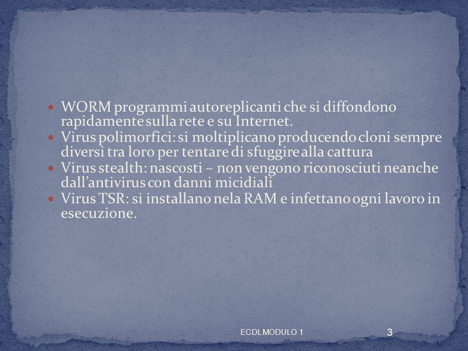 WORM programmi autoreplicanti che si diffondono rapidamente sulla rete e su Internet.
