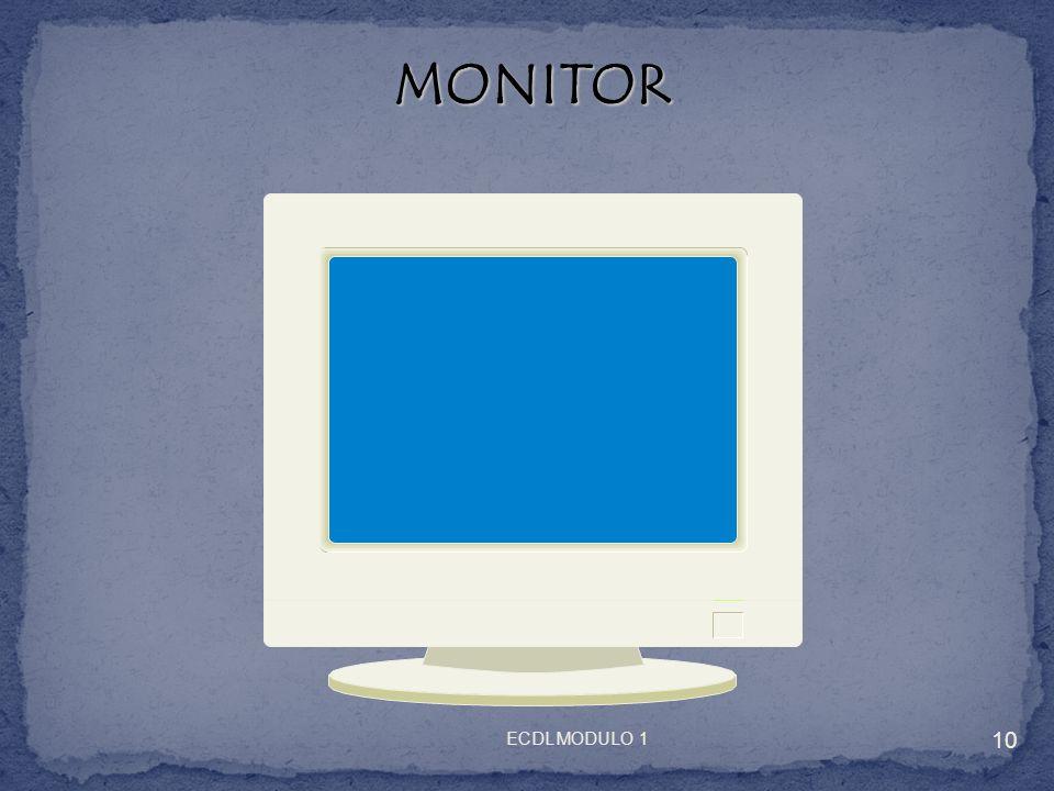 MONITOR MONITOR 10 ECDL MODULO 1