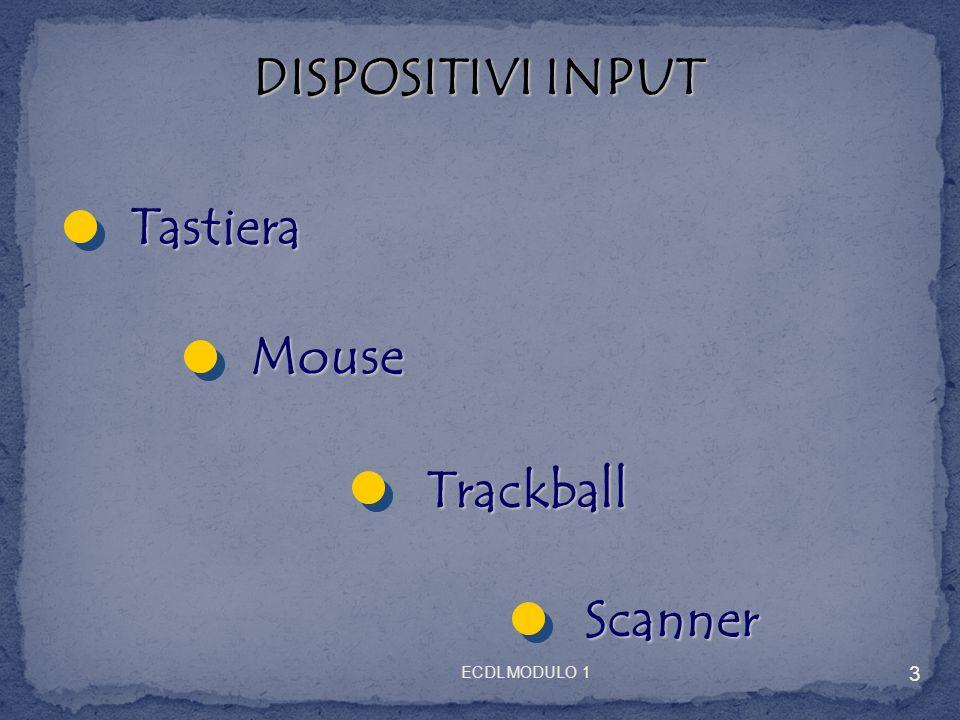 TASTIERA Tasti funzione Tasti direzione Tastierino numerico Tasti alfanumerici 4 ECDL MODULO 1