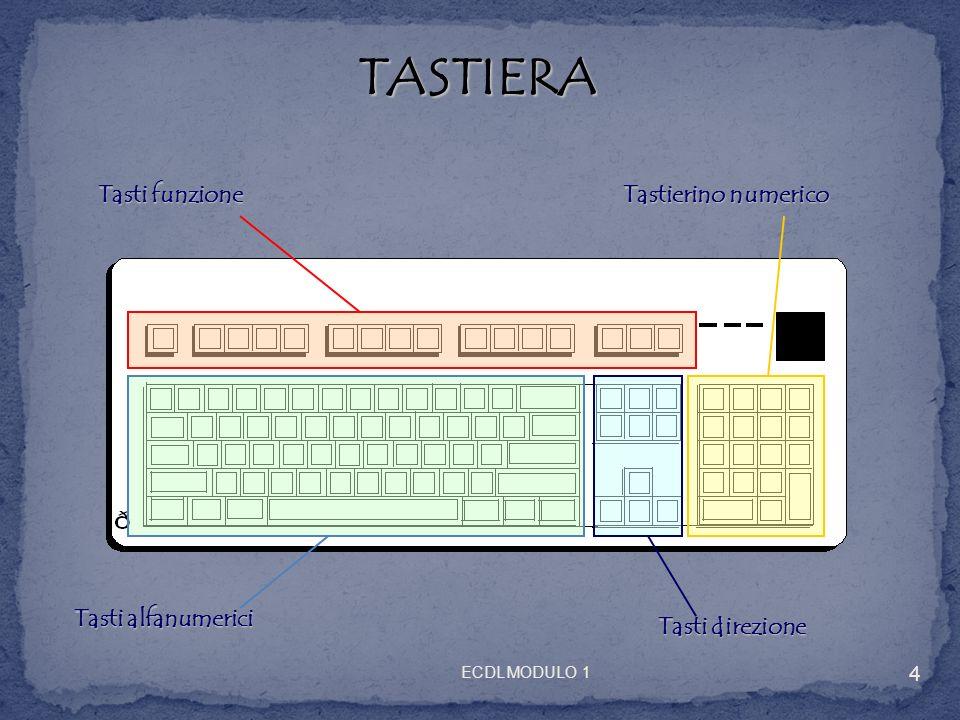 MOUSE Clic/Selezione Menu contestuale/ Selezione alternativa Autoscroll 5 ECDL MODULO 1