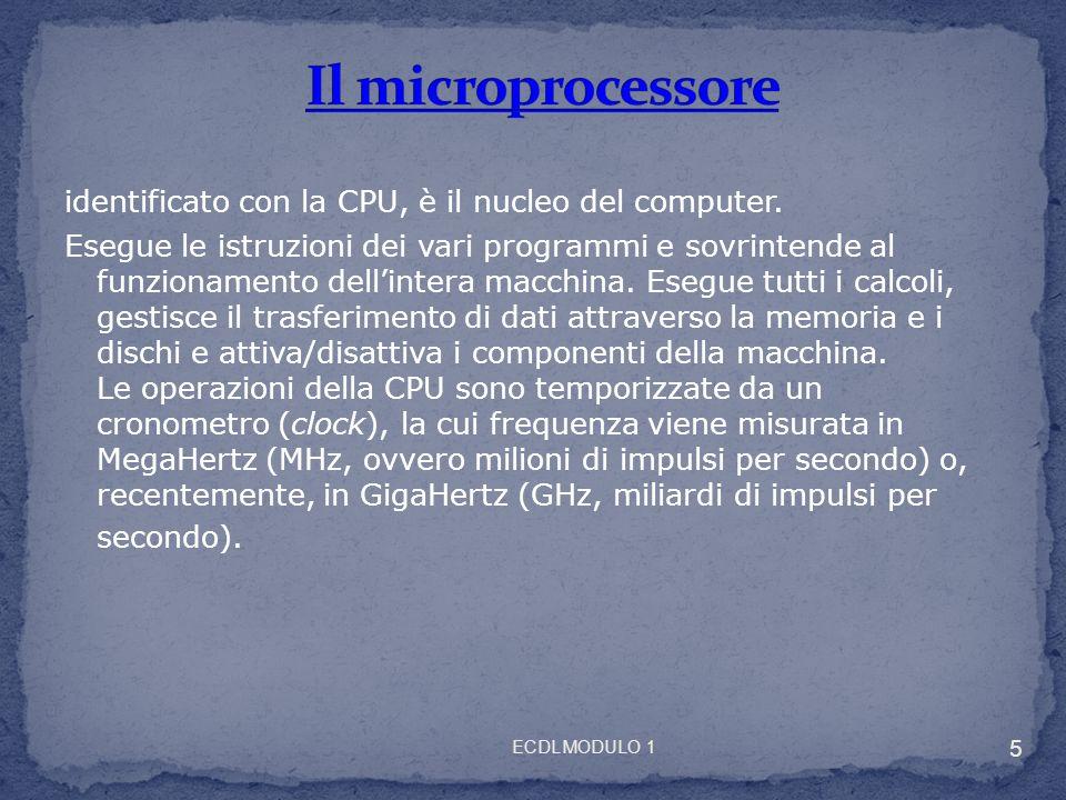 identificato con la CPU, è il nucleo del computer. Esegue le istruzioni dei vari programmi e sovrintende al funzionamento dellintera macchina. Esegue