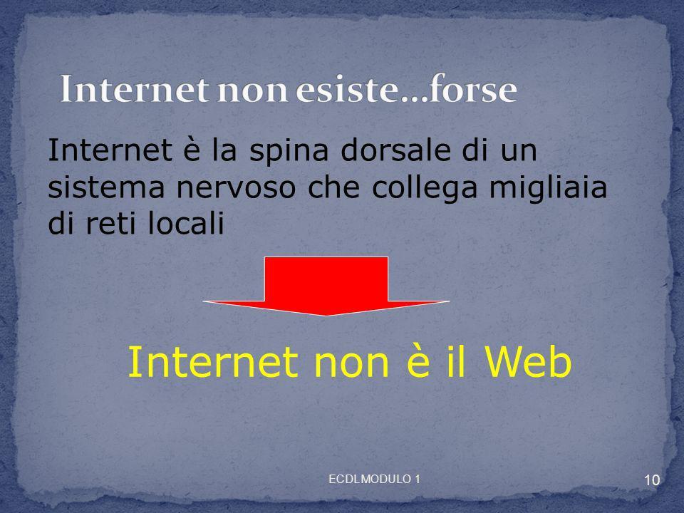 Internet è la spina dorsale di un sistema nervoso che collega migliaia di reti locali Internet non è il Web 10 ECDL MODULO 1